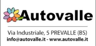 logo Autovalle