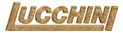 lucchini-2014[1]